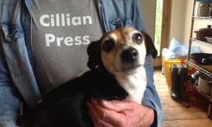 Cillian dog